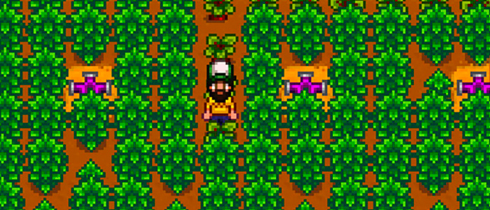 A stardew valley farmer in a trucker hat stands in their Greenhouse, surrounded by coffee plants, fruit trees, and iridium sprinklers
